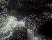 Loira mari alexandre nua em cima do carro